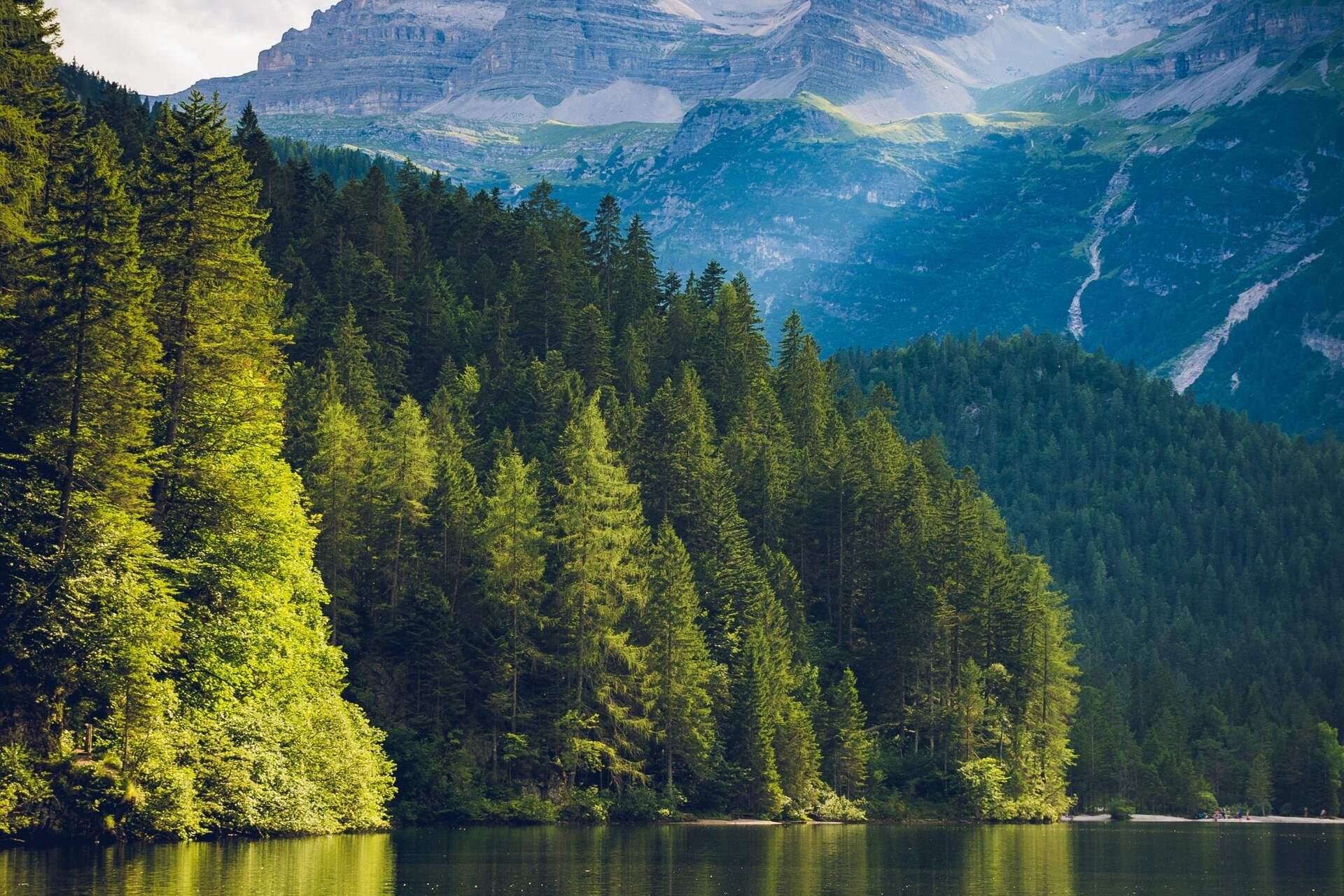 Harmoniserend ademen herstelt de harmonie tussen lichaam en geest